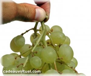 Une grappe de raisins !