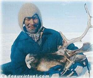 Un voyage en Laponie