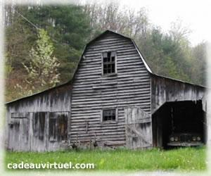 Une cabane hantée