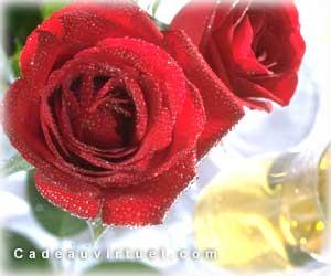 Une Rose accompagnée de Champagne