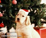 Cliquez pour choisir Un chien de Noël