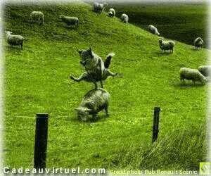 Une partie de saute-moutons