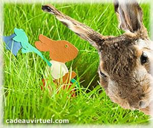 Chercher le lapin !