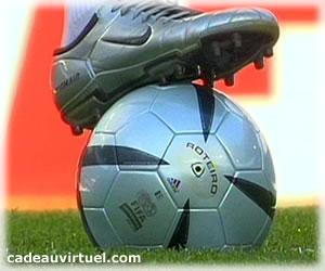 Le Ballon des Champions